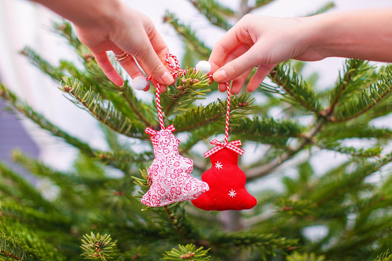 Boże Narodzenie 1529